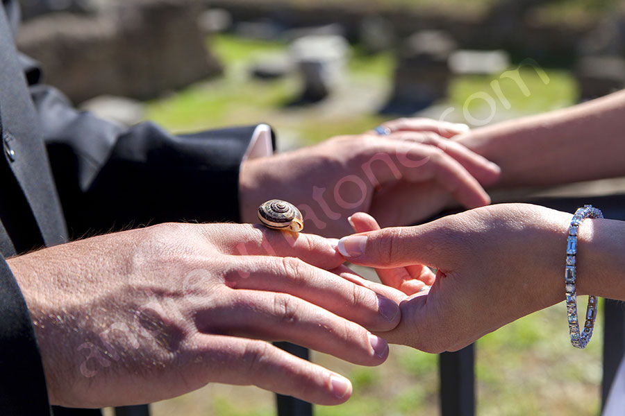 A little snail resting on the hand of the groom