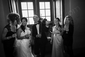The wedding party during violin music and celebrations