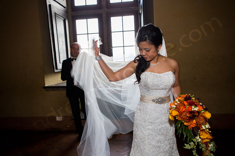 The bride photographed with her wedding dress