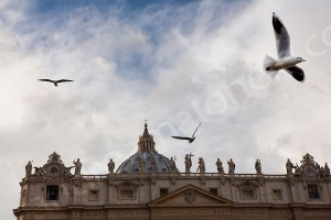 Birds flying in the air at Saint Peter's square in Rome Italy