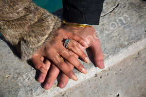 Couples hands photographed one on top of the other after the proposal in Rome Italy
