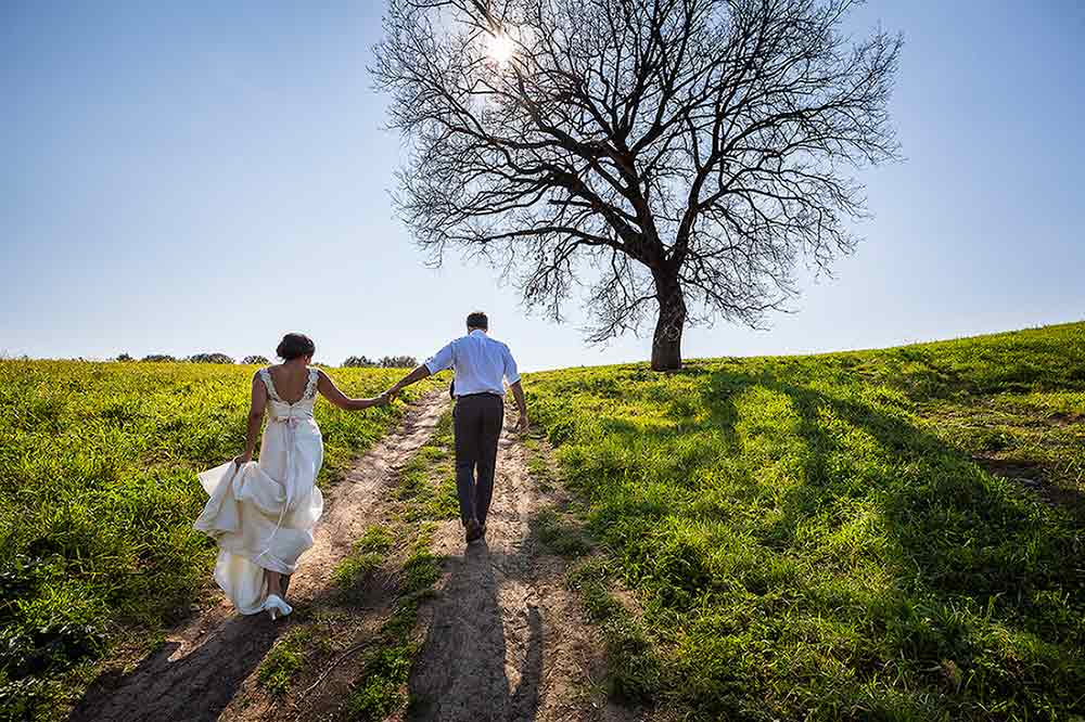 Just married in Italy. Italian countryside marriage. Symbolic artistic image. Wedding Photographer Rome.