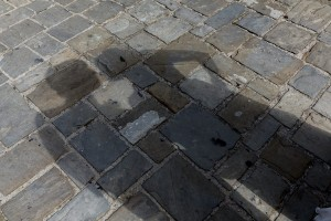 Shadow cast on the ground of a wedding couple