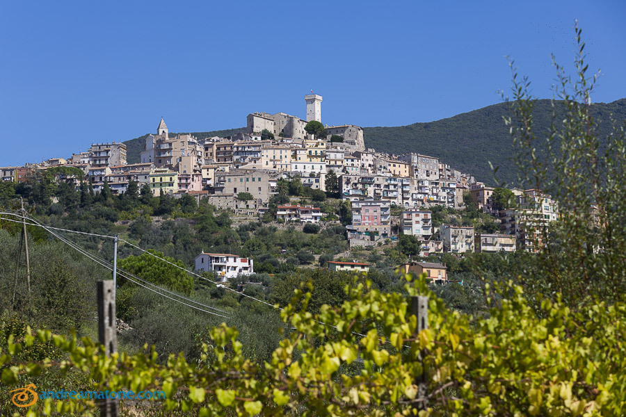 The town of Palombara Sabina in Italy seen from a distance