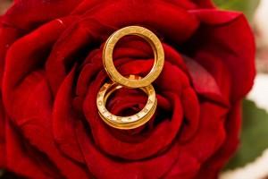 Close up wedding rings by Bulgari