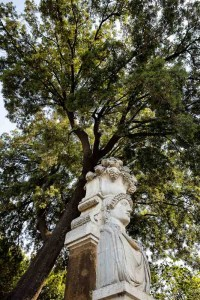 Interesting statue under a tree in a park in Rome Italy