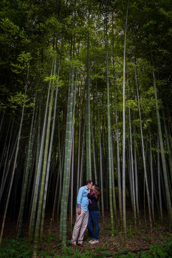 Portrait session by the bamboo forest