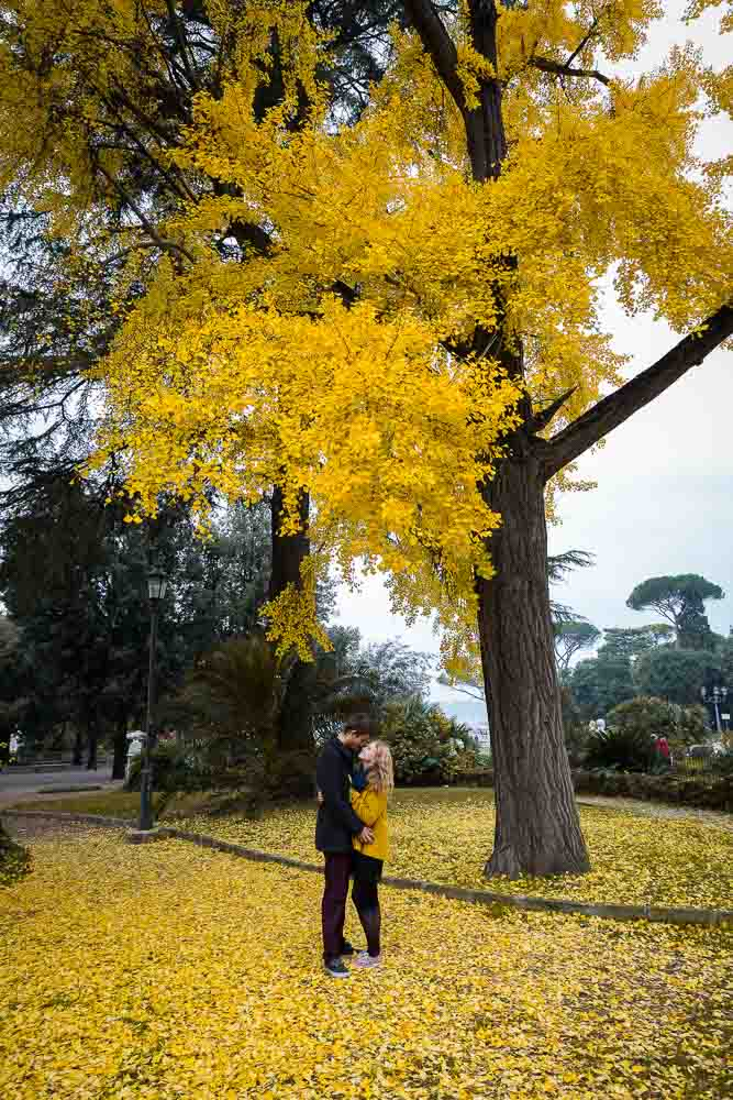 Engagement session under a yellow autumn tree
