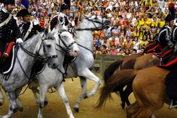 Palio di Siena. Horse race details.