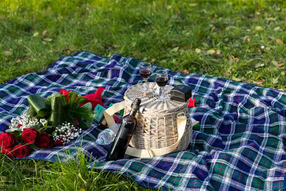 The picnic basket. Romantic picnic proposal