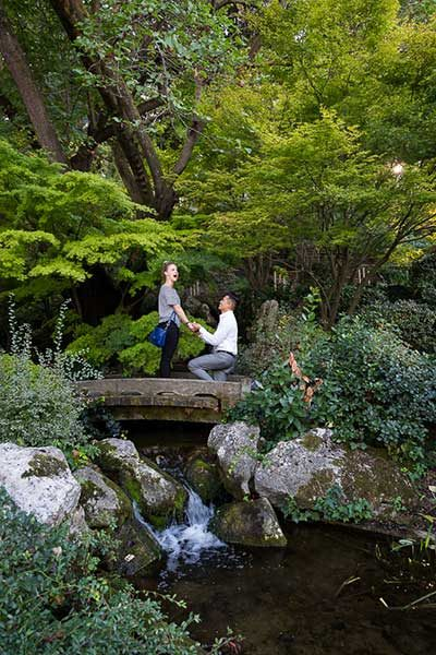 Marriage proposal in a Japanese garden