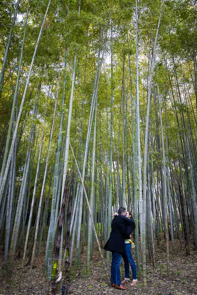 Bamboo forest in love portrait