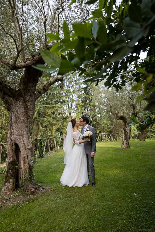 Just married photos in the gardens with olive trees