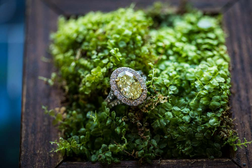 Close up macro image of the wedding ring against green flora background