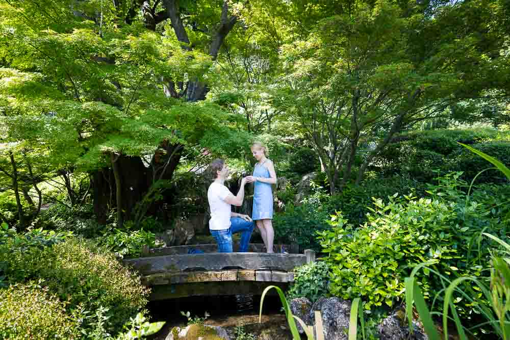 Botanical garden wedding proposal on the small bridge of the Japanese garden