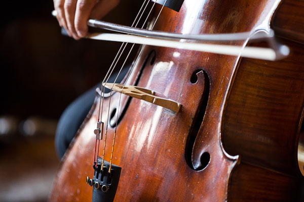 Cello closeup playing classical music