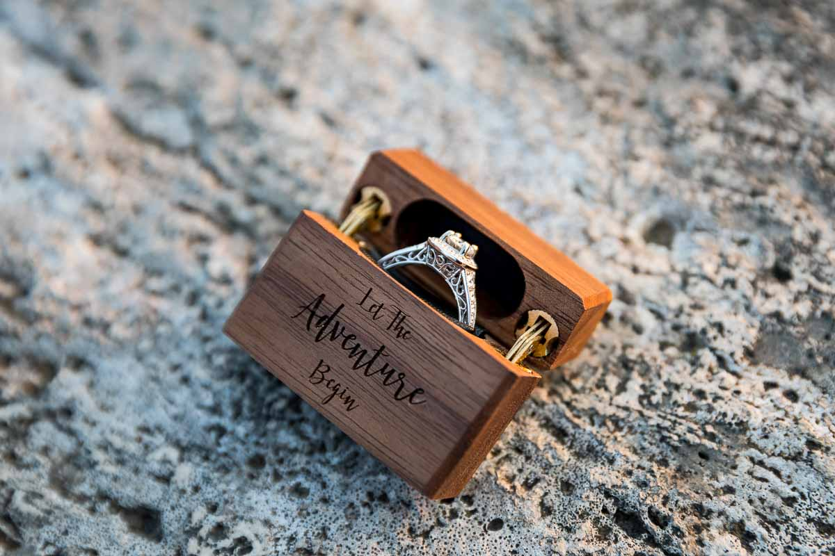 Close up picture of the engagement ring in its case: the adventure begins!