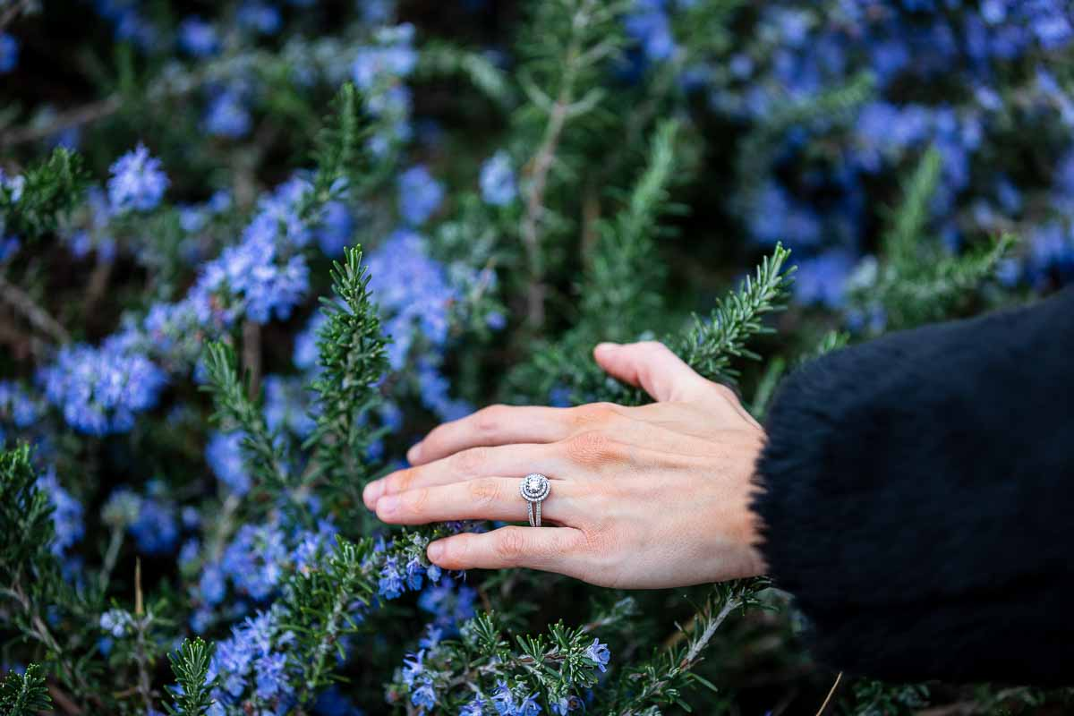 Engagement ring photographed on a hand placed in front of lavanda blue flowers