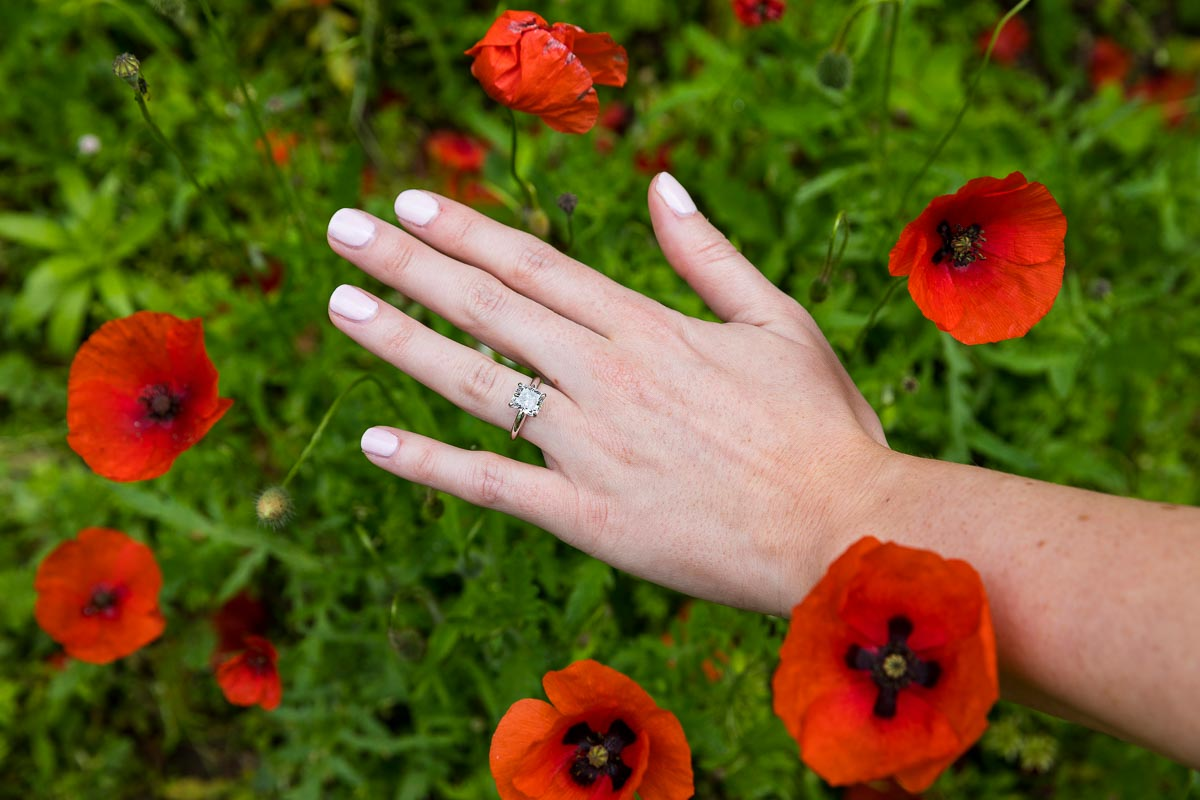 Close up image of the engagement ring photographed among red poppy flowers
