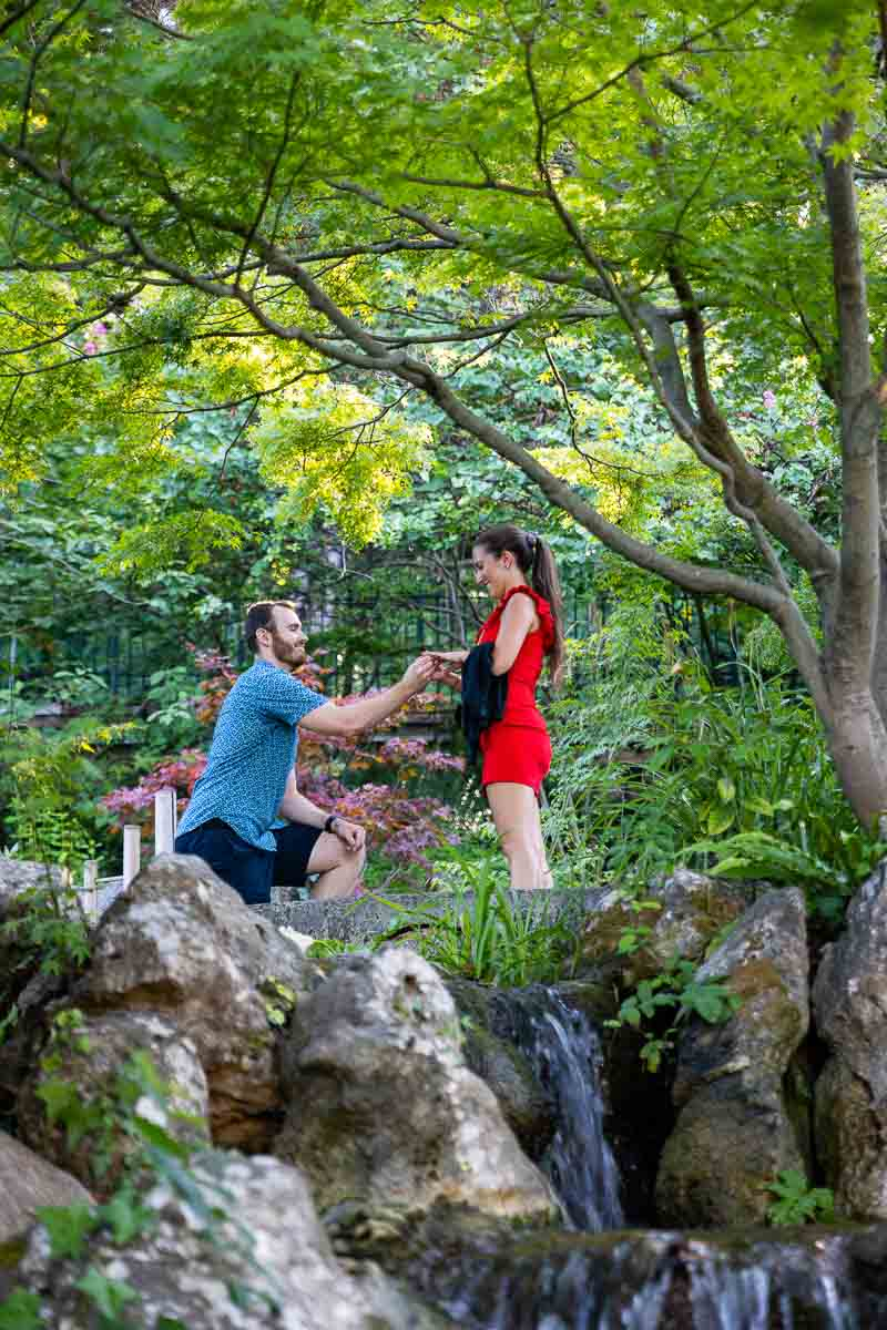 Surprise Wedding Proposal candidly photographed in the Japanese Garden of Rome's Botanical Park