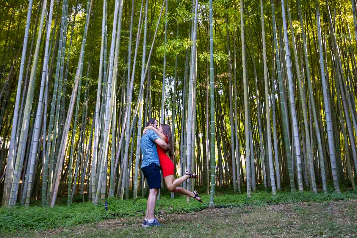 Bamboo forest couple. Love story photo session in a beautiful park