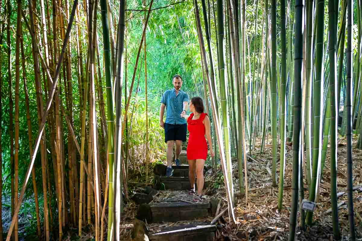 Walking together inside the bamboo forest hand in hand